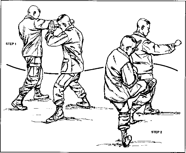 Figure 5-11. Kick as a defense against punch
