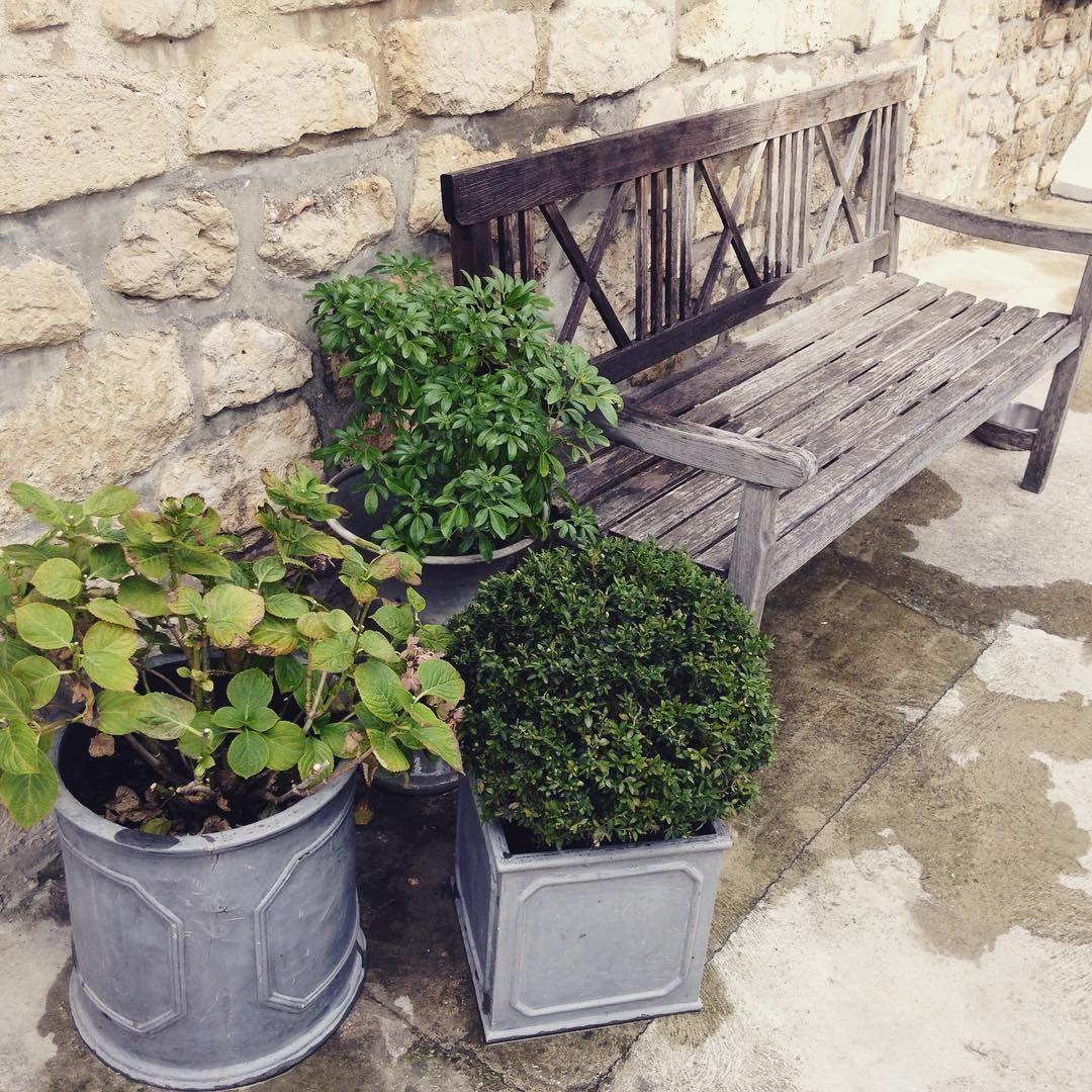Nettoyer Le Jardin Bon Dimanche Ig Et Bienvenue A Mes Nouveaux Abonnes Athome Jardin Banc Buis Pierre Blog De Jardins Amenagement Jardin Deco Jardin