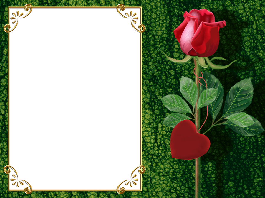 Transparent Green PNG Photo Frame with Rose and Heart | Flowers ...