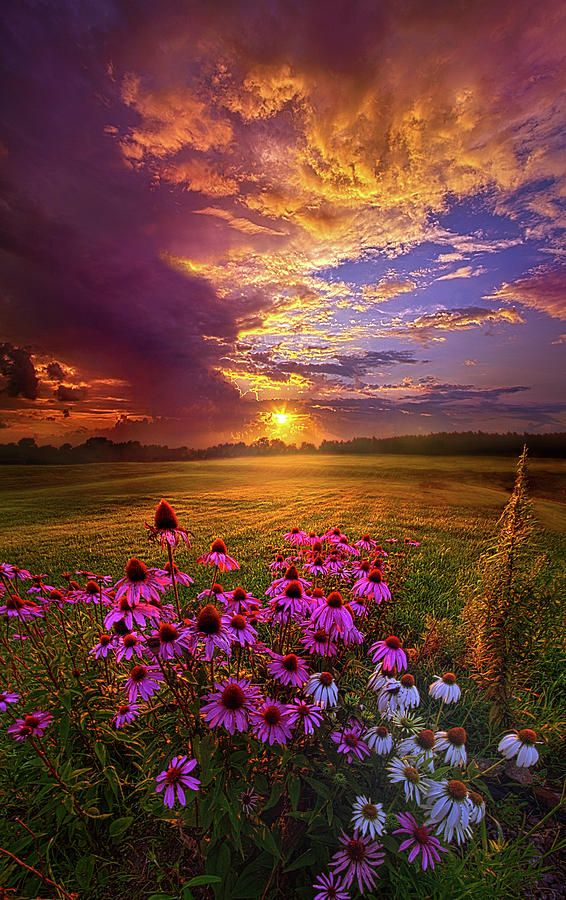 Into The Moment by Phil Koch