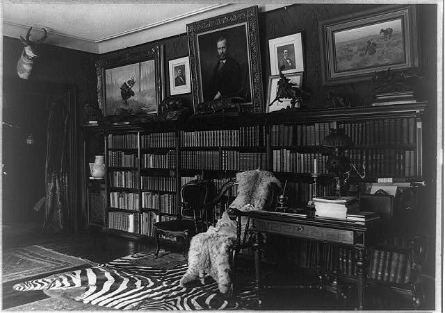 Taxidermy, Rugs, Books, Paintings; Library at Sagamore Hill
