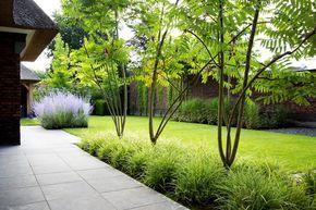 Siebers tuinprojecten rustieke weelde tuin rhus carex g