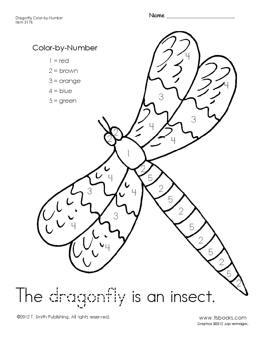 Dragonfly Color-by-Number Worksheet | learning Activities ...