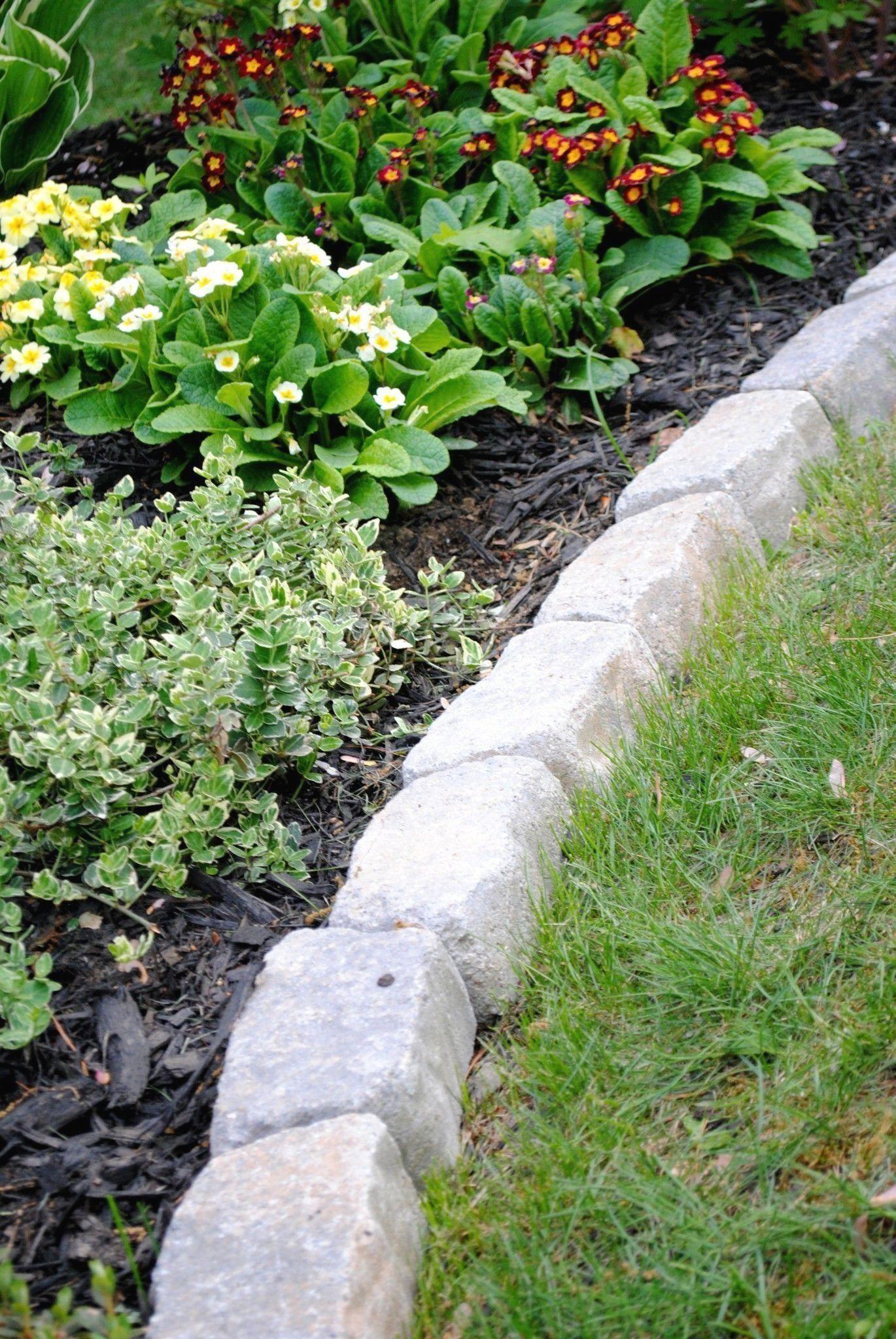 how to fill a raised garden bed cheap Modern Design