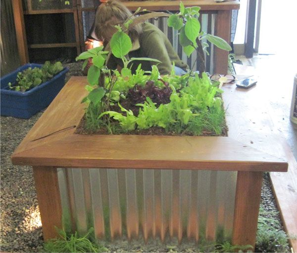 Corrugated Metal Raised Bed