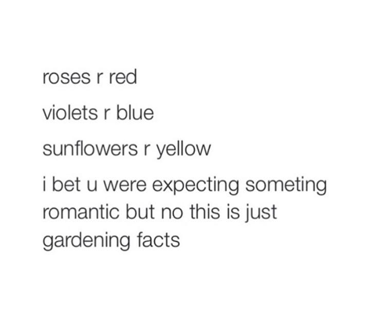 Laut lachen flirten