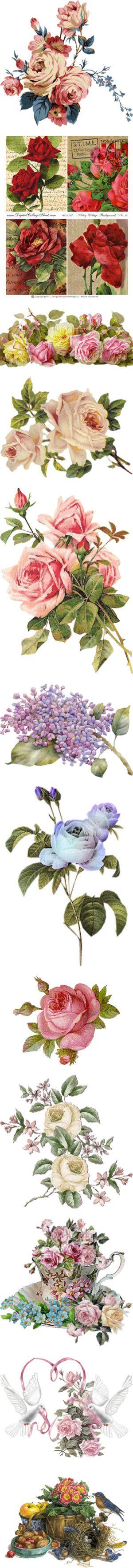 """Victorian Flowers"" by maneevanit ❤"