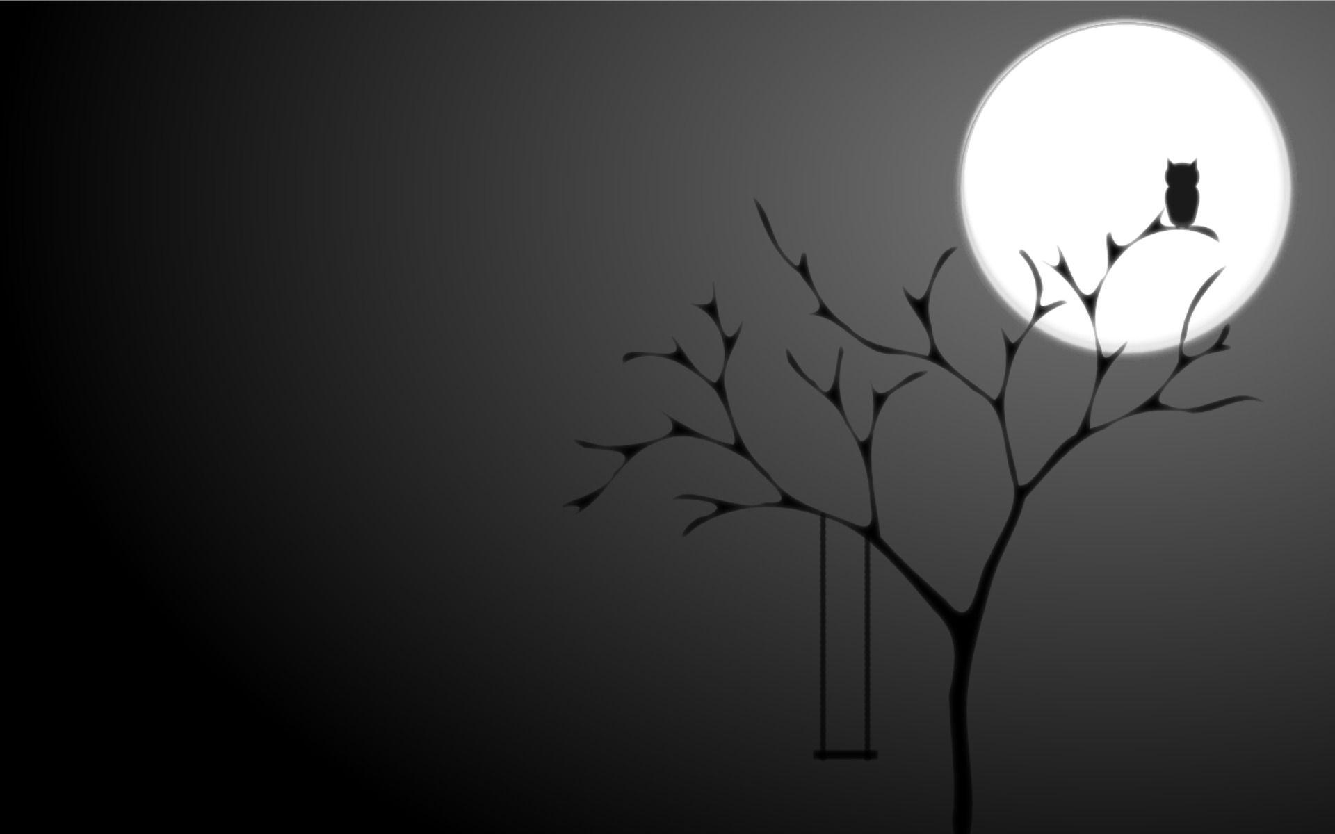 Night Owl Owl Background Black Hd Wallpaper Owl Wallpaper
