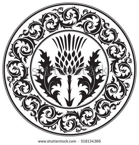 Thistle Flower And Ornament Round Leaf Thistle The Symbol Of