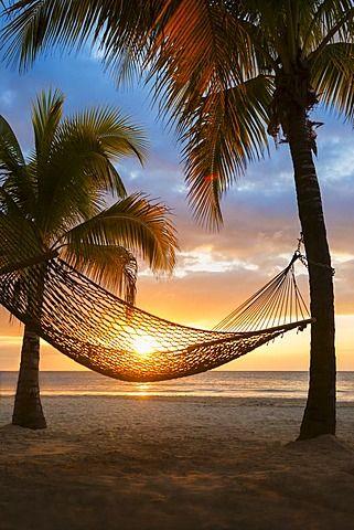 Hamaca en la playa al atardecer jamaica jamaica - Hamacas de playa ...