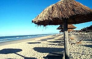 Delícias típicas à base de caranguejo, siri, lambreta e sururu servidas nas barracas de praia são as grandes atrações da orla de Aracaju.