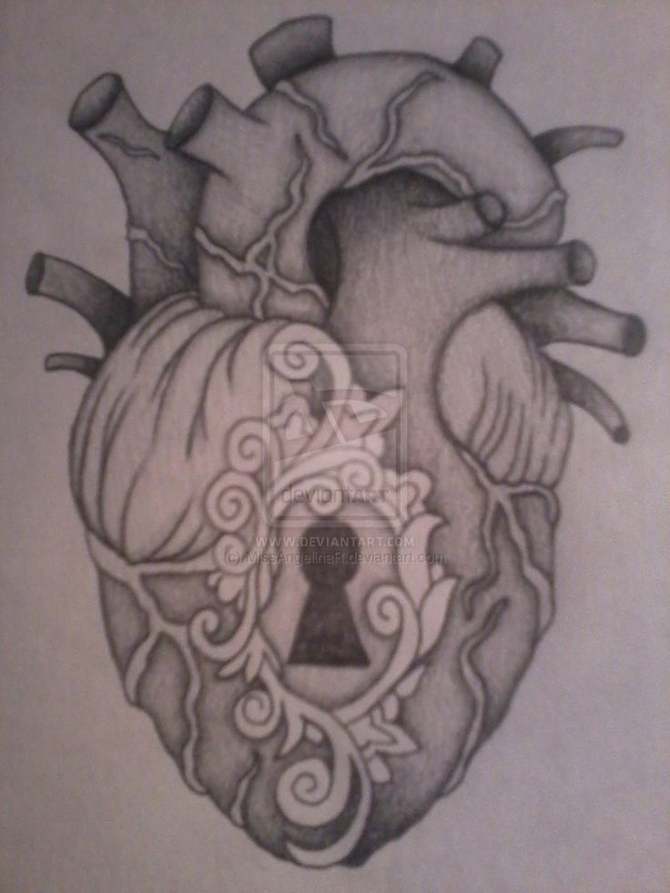 anatomical heart locket tattoo drawing. | art that i love, Muscles