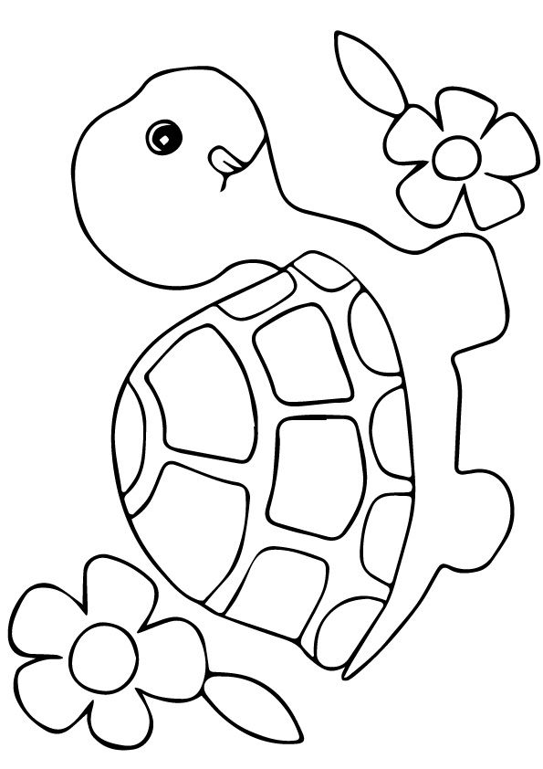 Turtle Flowers small Coloring Page