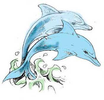 Dolphin femeie datand