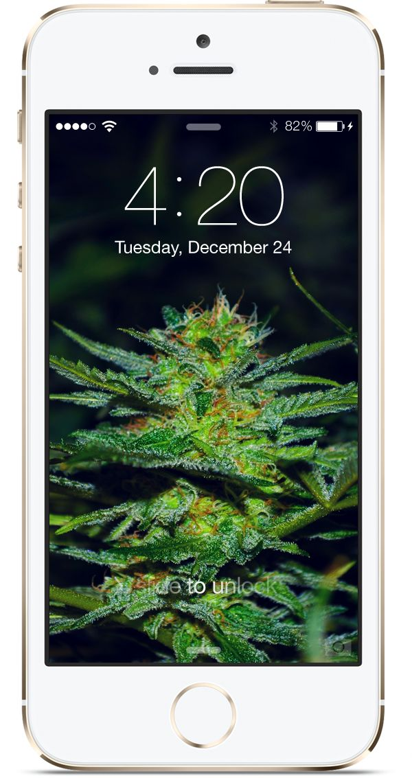 Click To Download Wallpaper Marijuana Cannabis Iphone Background Weed