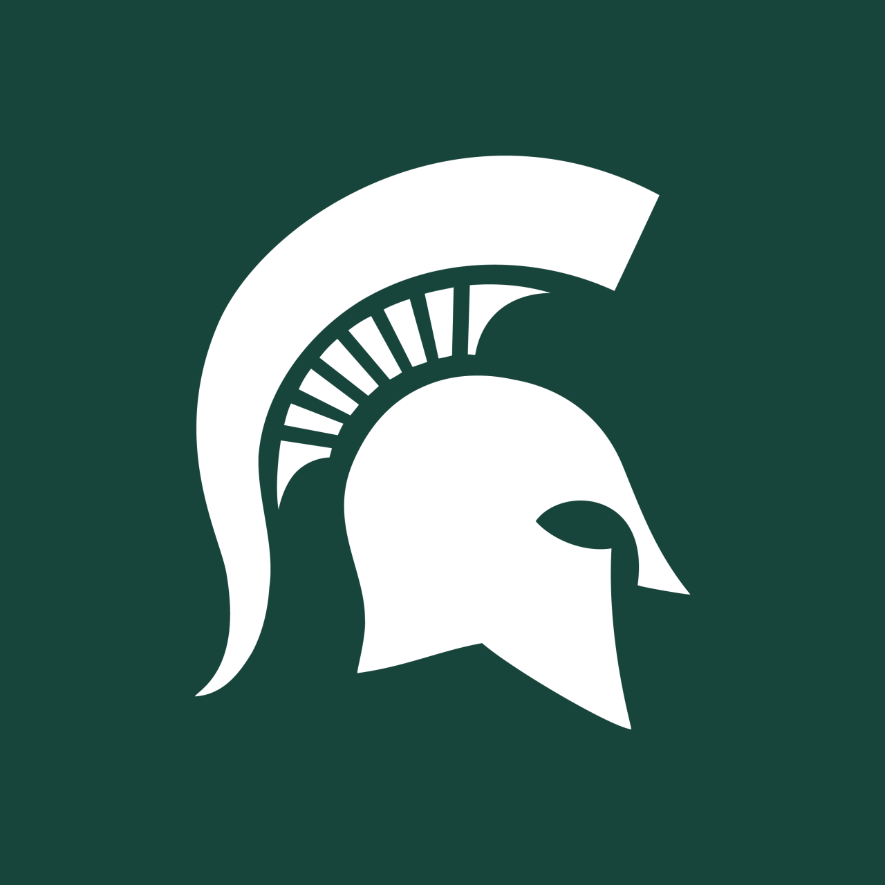 Michigan State Spartans Ncaa Designer Unknown Firm N A Year Logocore Michigan State Logo Michigan State Spartans Michigan State