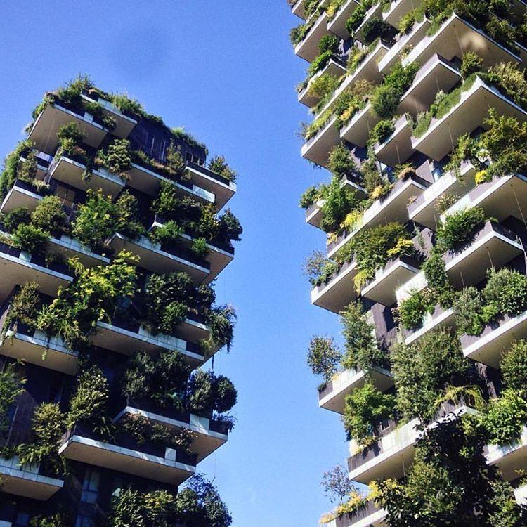 Bosco Verticale Milan Grune Architektur Gruner Pudding Und Nachhaltige Architektur