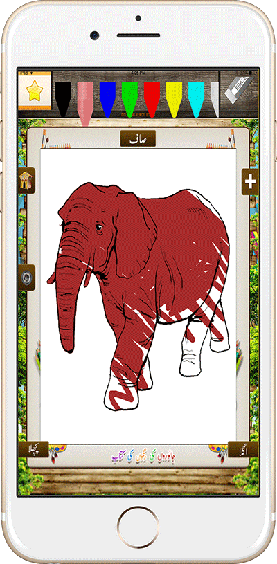 Animals Coloring Book Fill
