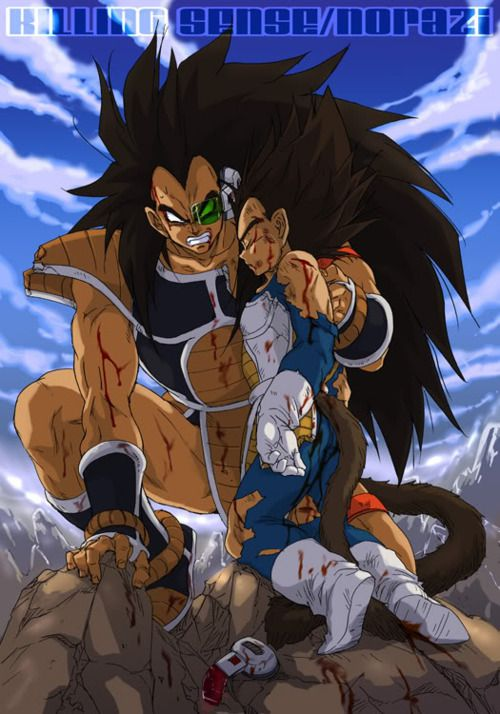 Dbz Raditz And Vegeta Dragon Ball Z Dragon Ball Dragon Ball Z