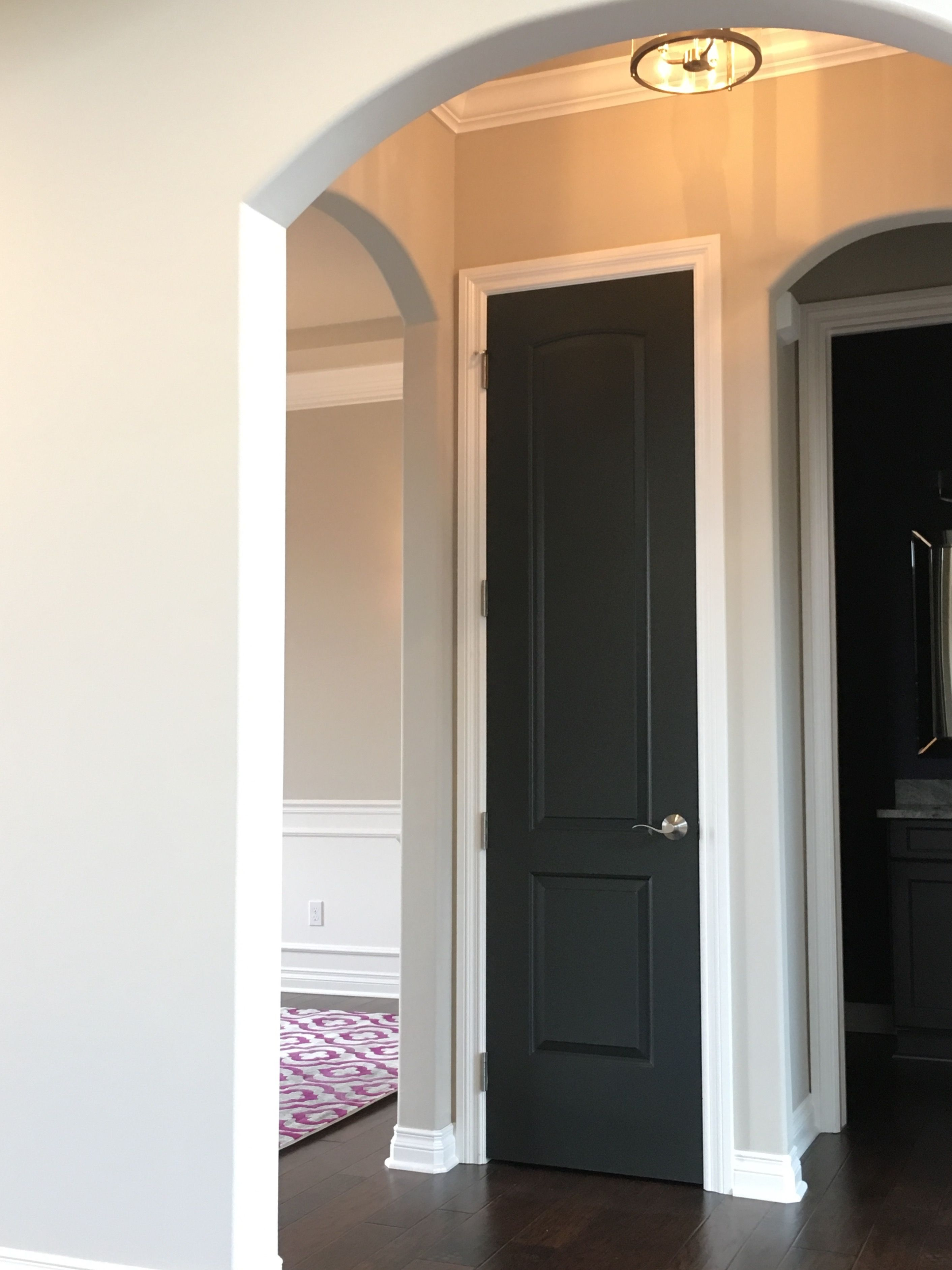 Wall sherwin williams accessible beige dark door sw for Painting trim darker than walls