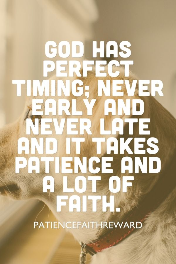 God Has Perfect Timing Faith Quotes Pinterest Faith Quotes