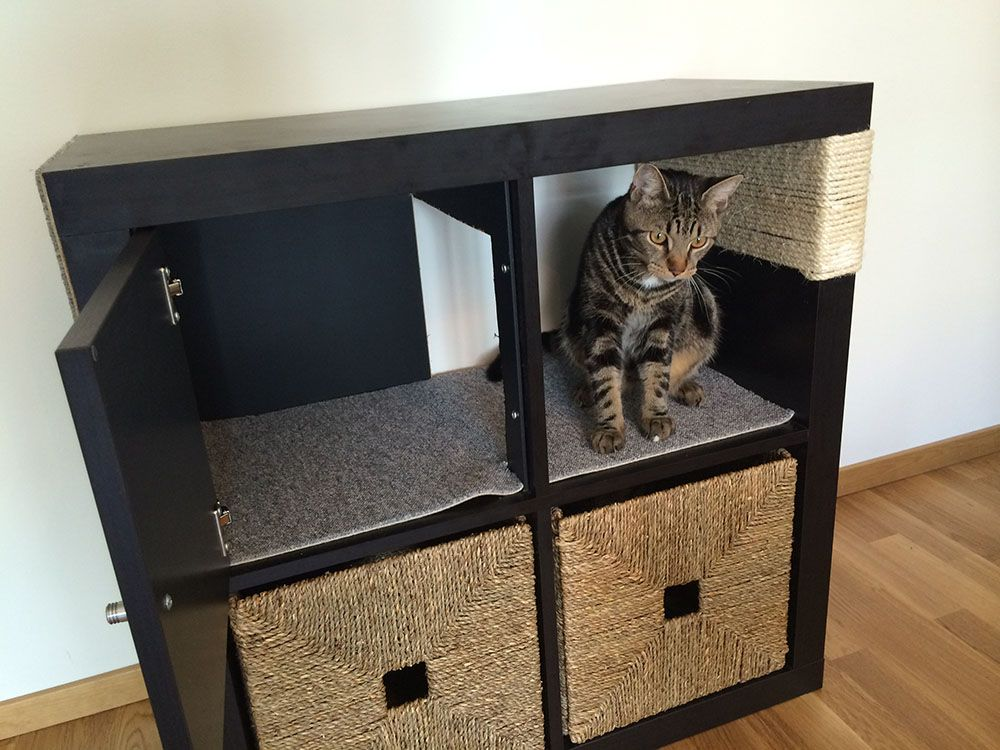 Kallax cat scratching furniture Ikea cat, Cat hacks, Kallax