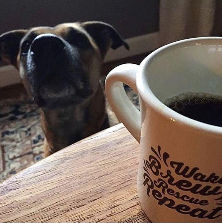 Rescue Brew Diner Mug Mugs, Brewing, Perfect date