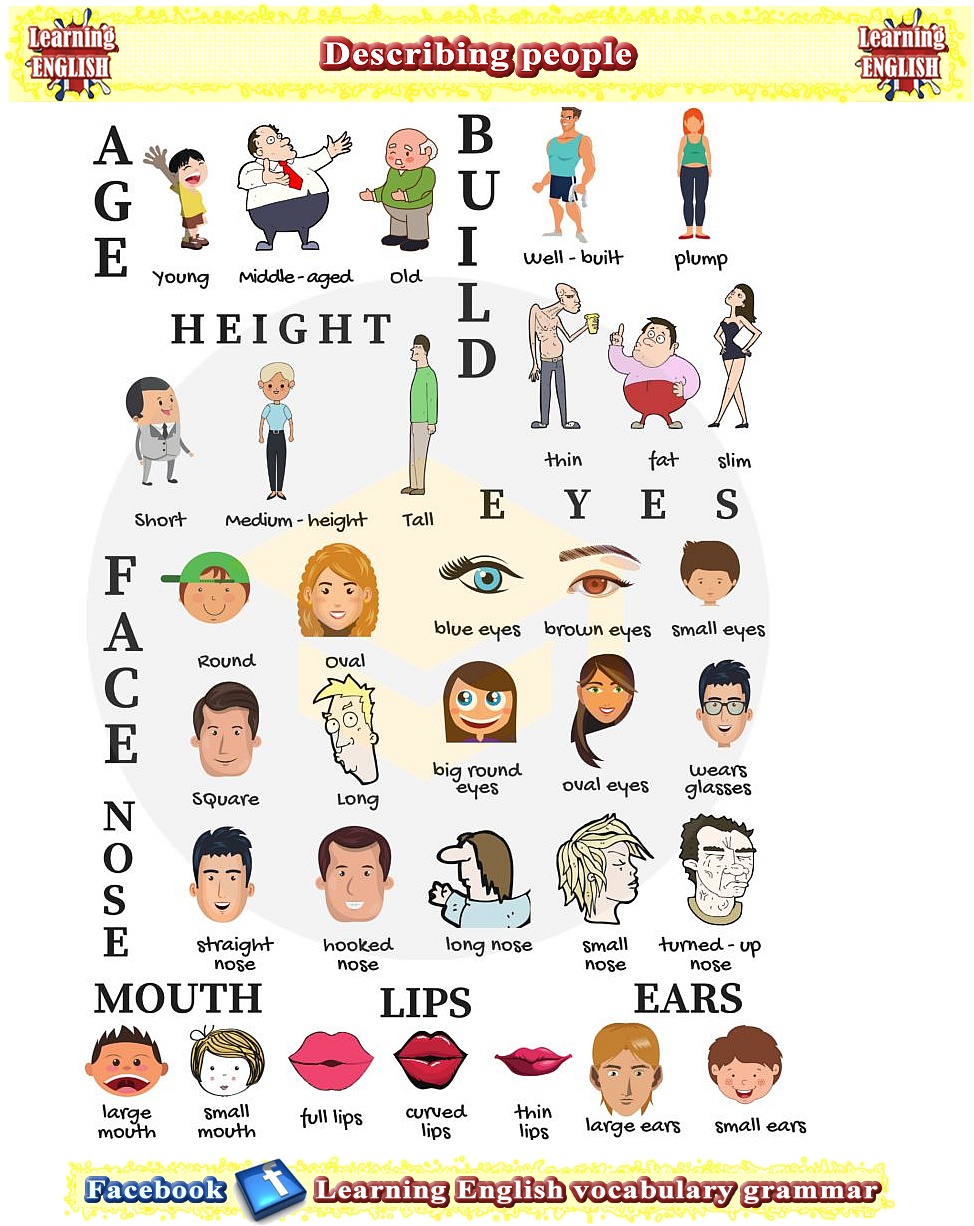 Describing people - things and opposites vocabulary PDF