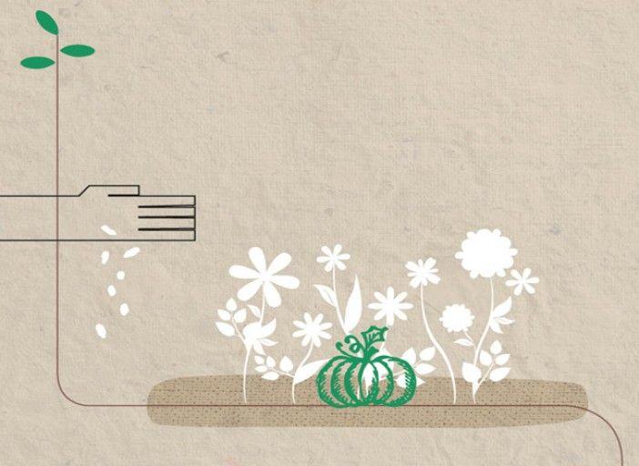 R colter ses graines semer avec la lune semer avec la - Graines et jardin calendrier lunaire ...