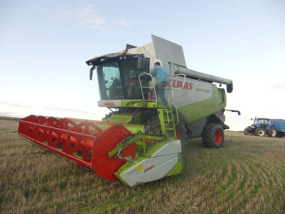 Harvesting in Kinsale, Co. Cork, Ireland.