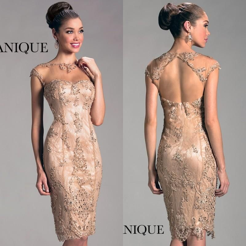Lace Short Mother of The Bride Dresses Knee Length Sheath Champagne ...
