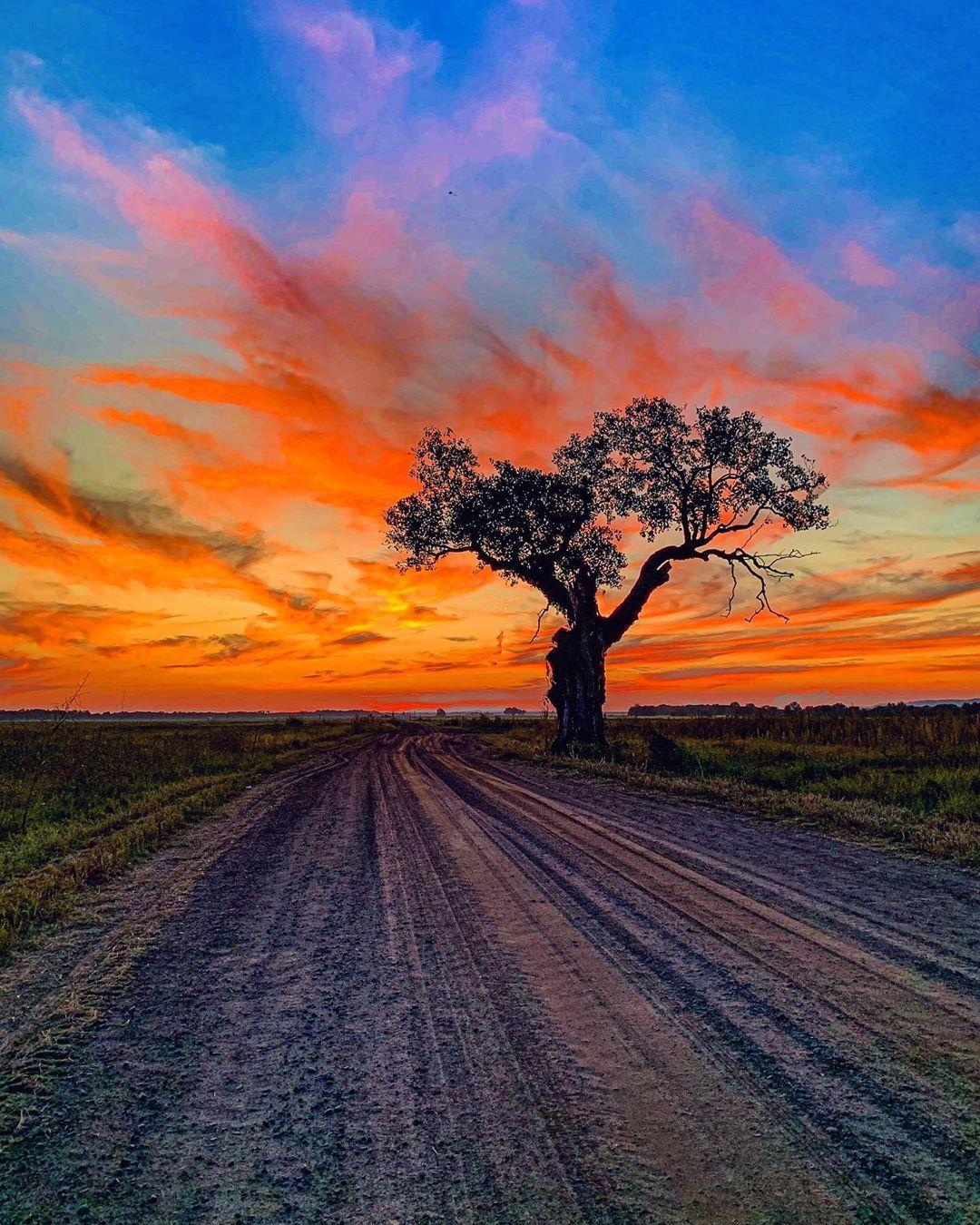 Pin By Nur Bilge On Light In 2020 Landscape Photography Sunset Pictures Landscape