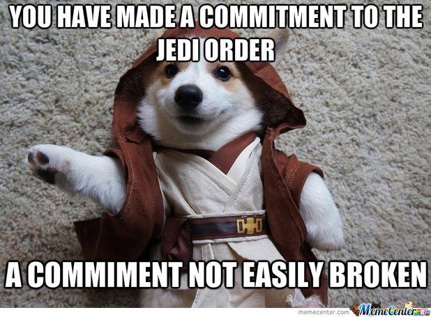 Cute Beagle Puppy Wallpaper Star Wars Funny But True Cute Funny Animals Funny
