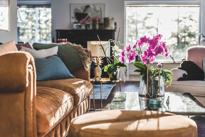 Brun Buffeln skinn soffa chesterfield, nitar, Baggen fotpall, puff, soffbord, bord, Jaguren
