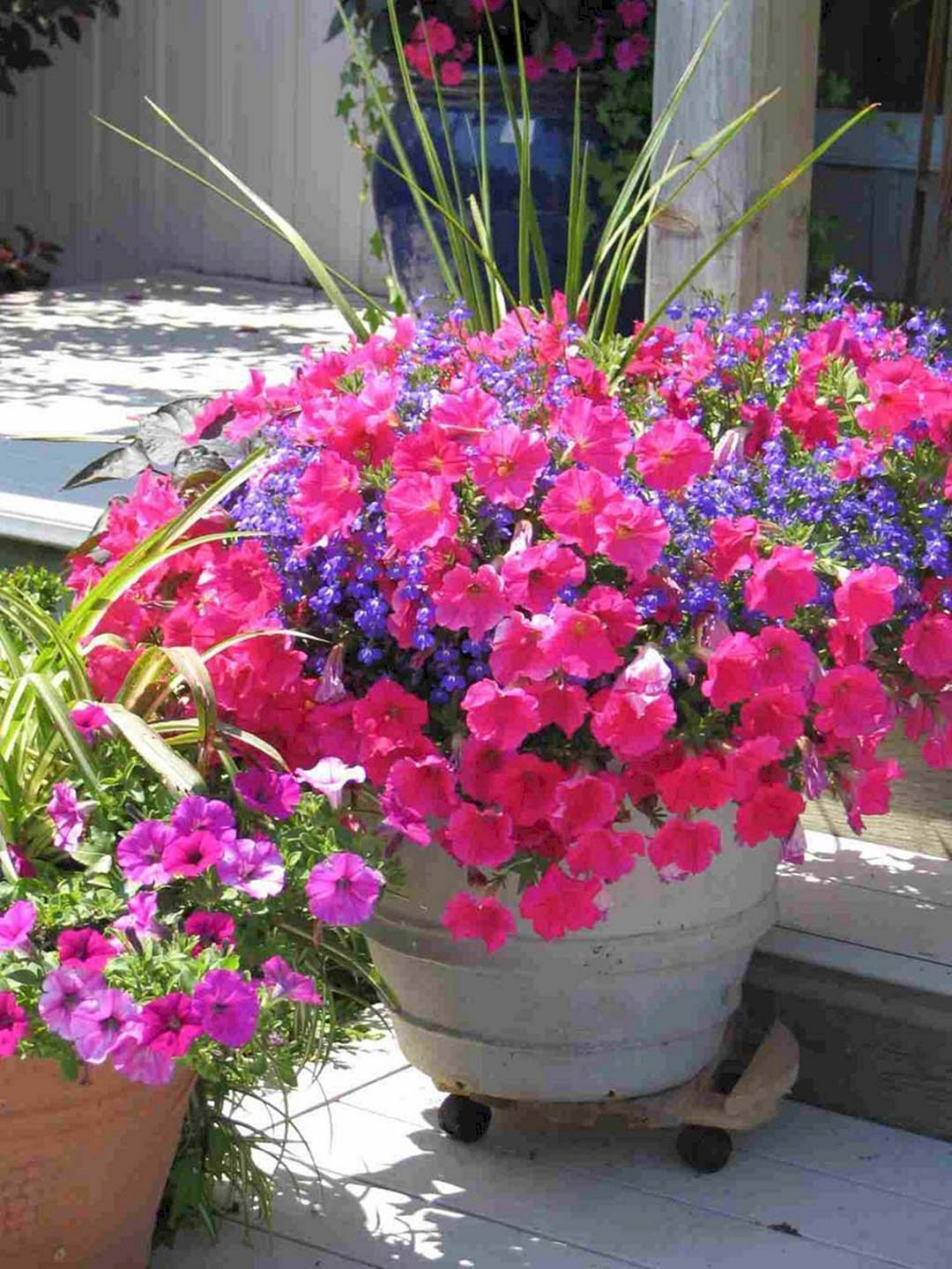 Dig A Hole Larger Enough To Easily Accommodate The Roots And Enrich It With Organic Matter Container Gardening Flowers Container Garden Design Container Plants