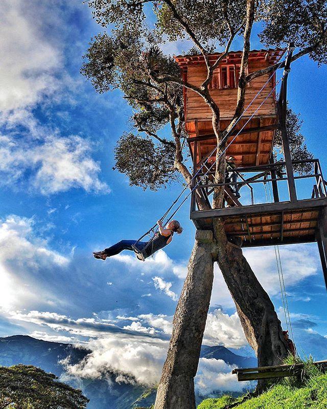 Casa Del Arbol The swing at the