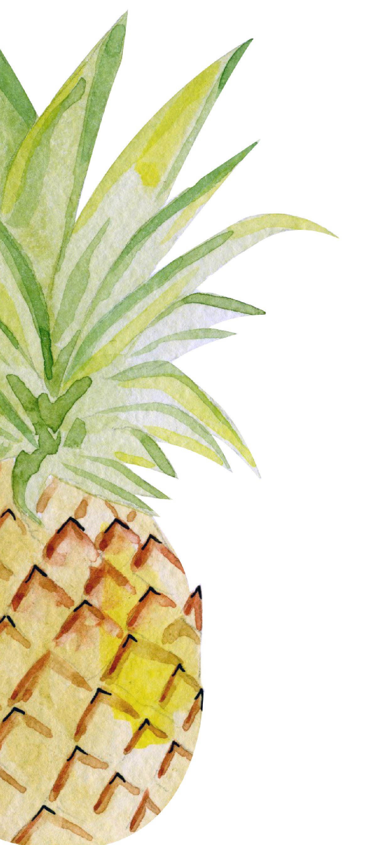 Free Summer Iphone Wallpapers Pineapple Iphonewallpapertumblr Wallpaper Iphone Summer Pineapple Wallpaper Cute Summer Wallpapers