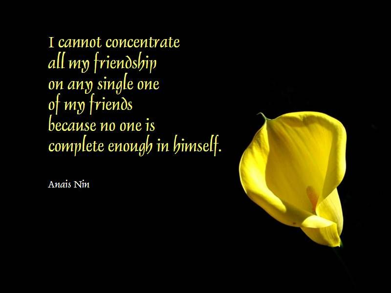 30 Heart Touching Friendship Quotes A House Of Fun Quotable