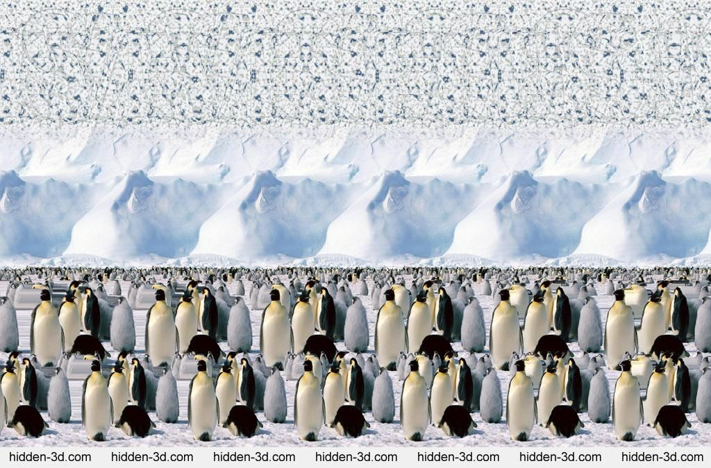 Stereogram by 3Dimka: Emperor Penguines. Tags: animals, penguines,antarctica,ice,snow, save us, hidden 3D picture (SIRDS)