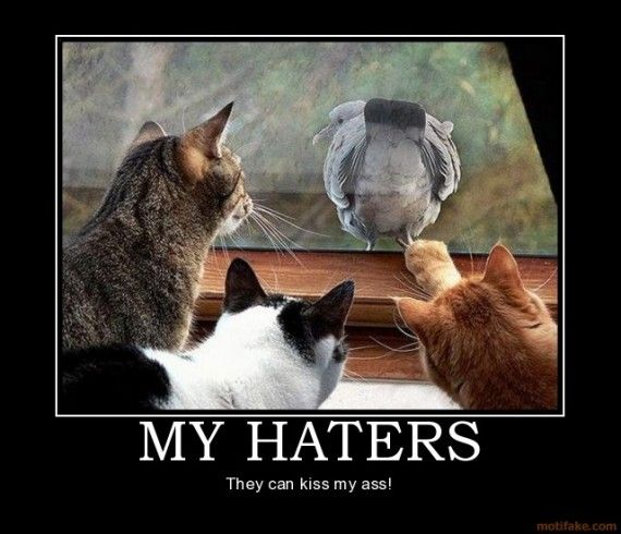 Image result for haters demotivational poster toptenz.net