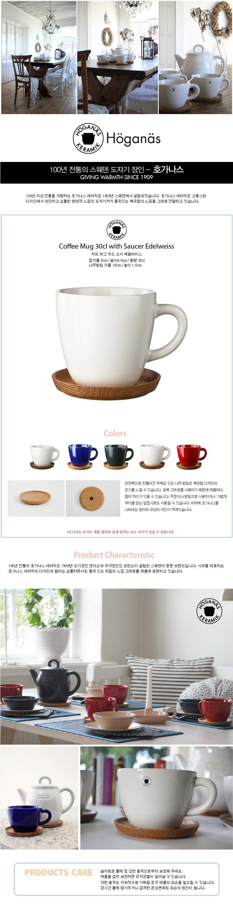텐바이텐 10X10 : 호가나스 커피 머그 위드 쏘서 에델바이스 300ml