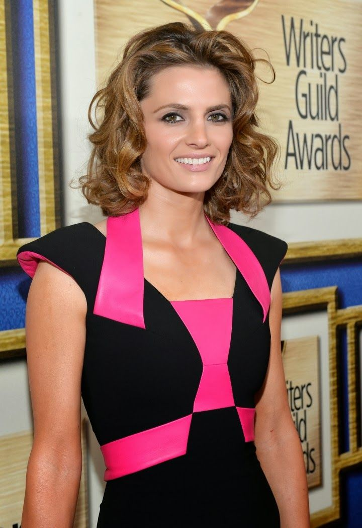 Stana Katic in a Rubin Singer dress at the 2014 Writers Guild Awards in LA