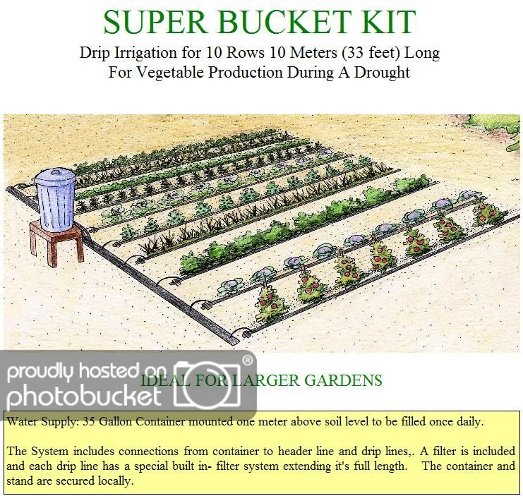 Gravity Drip Bucket Irrigation System With Images Garden