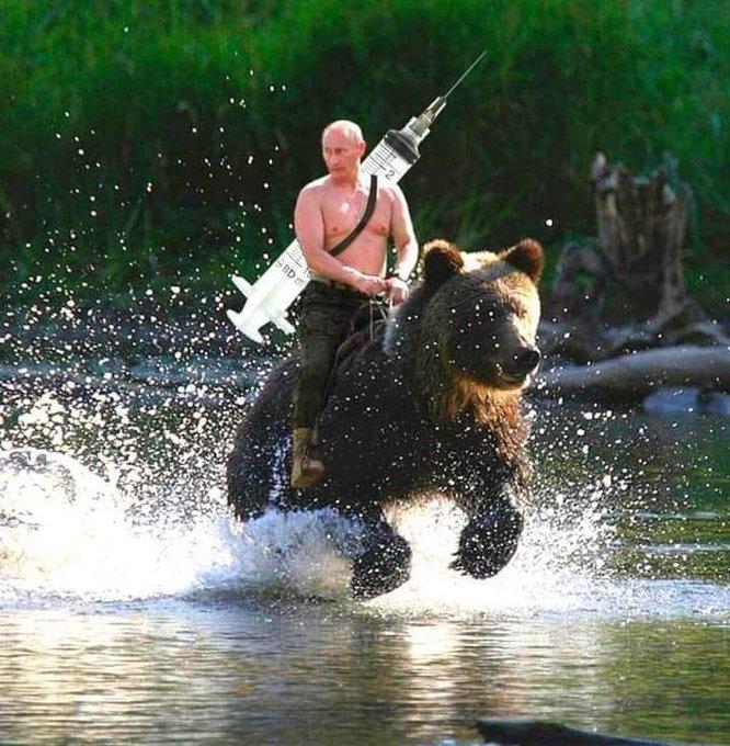 Holycrapter Sicksist Twitter In 2020 Memes Vladimir Putin Meme Grizzly Bear