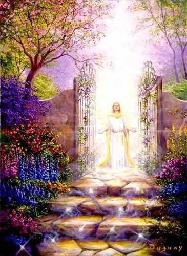 lumiere divine - Page 7 | Arte cielo, Fotos de alas de ángel,  Imágenes religiosas