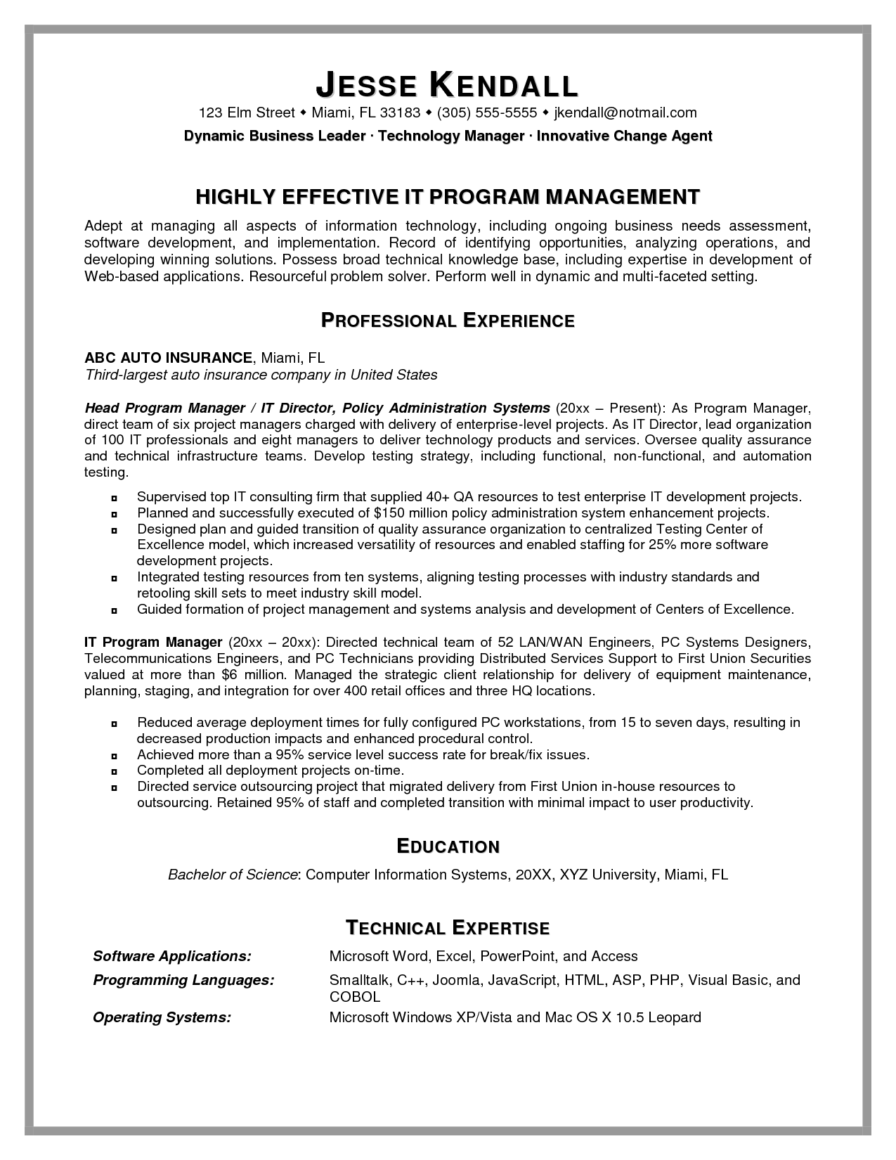 It management resume IT Program Management Resume Sample