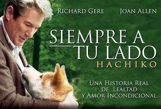 Cómo Quieres Que Cuente Estrellas Siempre A Tu Lado Hachiko 2009 Siempre A Tu Lado Hachiko Películas Completas Peliculas En Español
