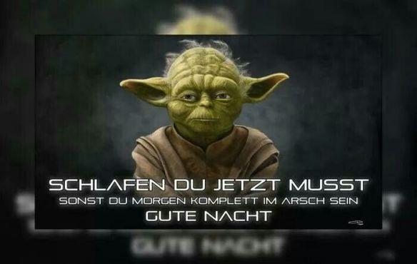 Meister Yoda Alter