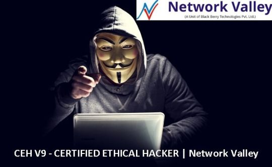 Certified penetration testing specialist certified ethical hacker