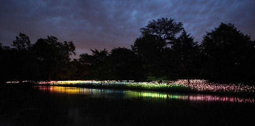 bruce munro: light at longwood gardens